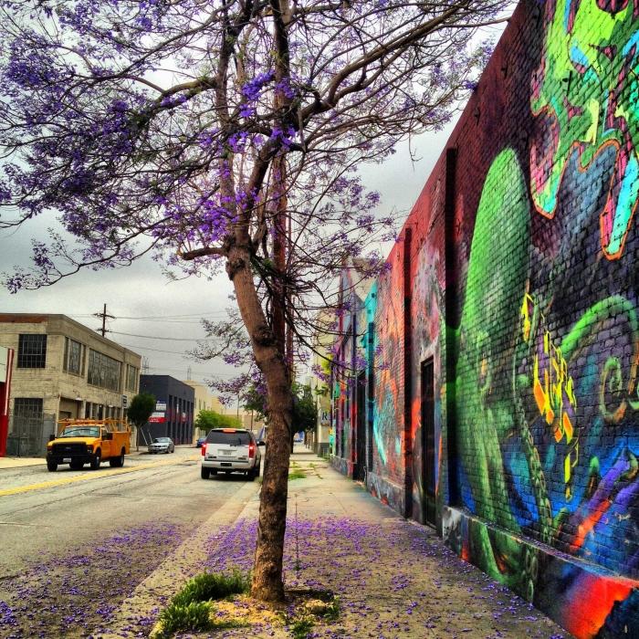 Richardson Banks, Melissa-Lavender tree and street art near Challenge Creamery